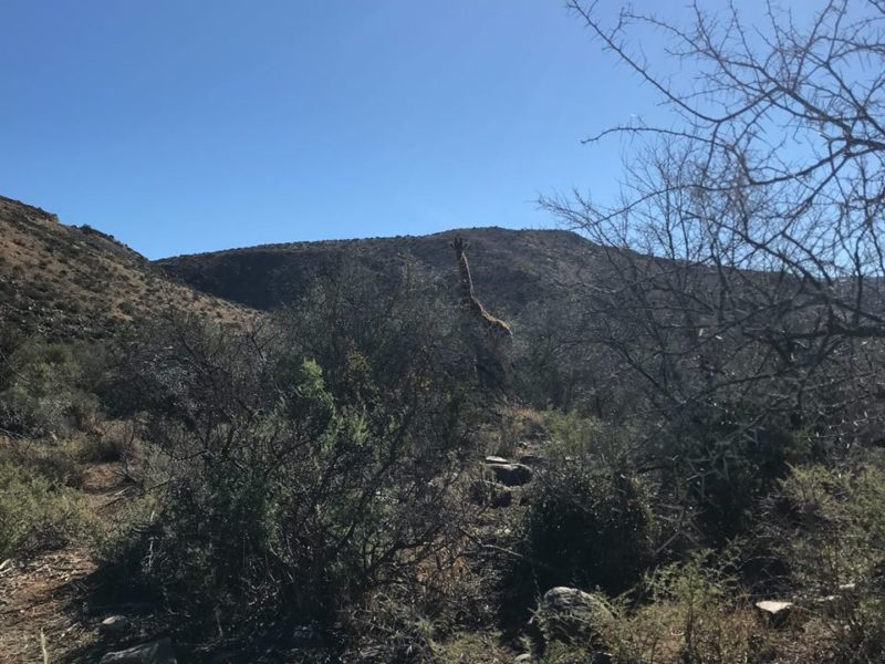 Karoo Hiking and MTB 4x4 Trails